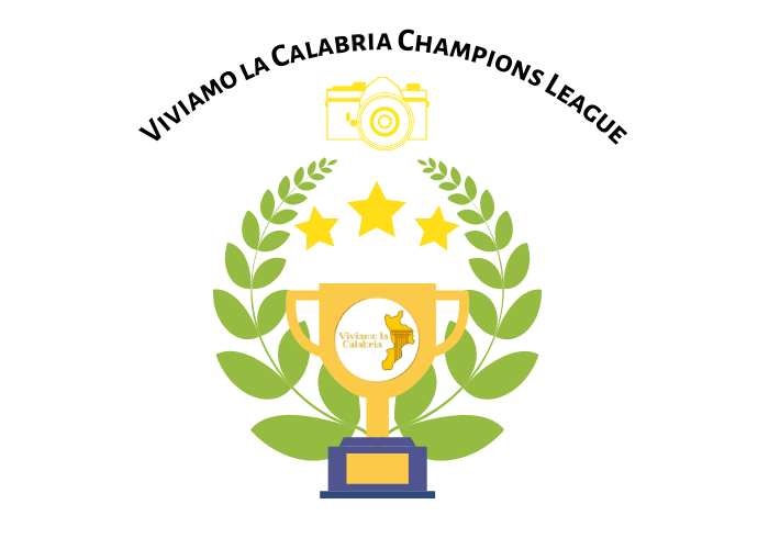Vincitore Viviamo la Calabria Champions League.