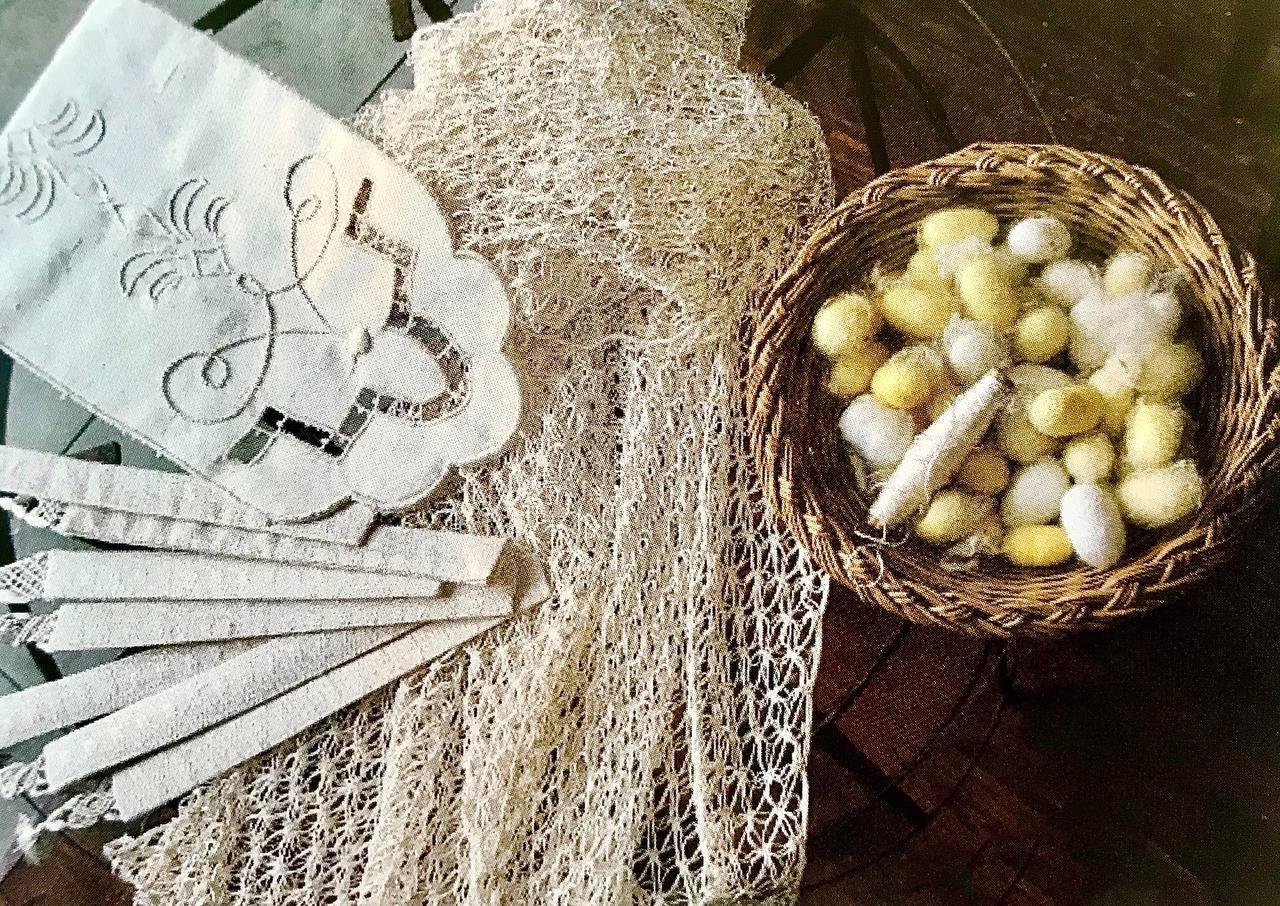 Il baco da seta, tra storia, sviluppo e tradizione.