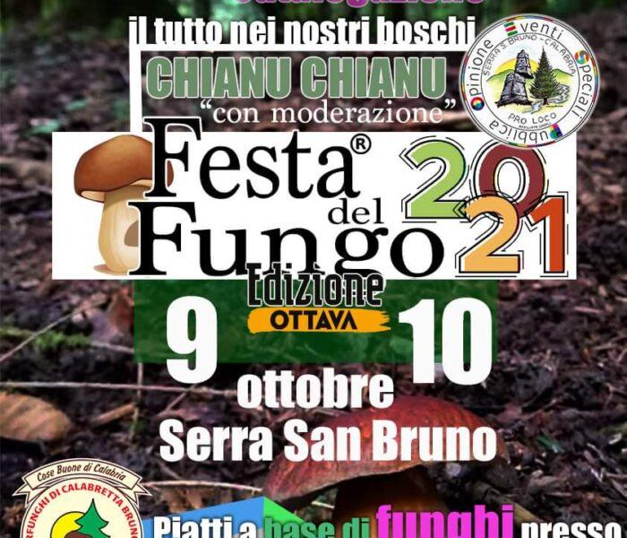 Ottava edizione della Festa del Fungo a Serra San Bruno